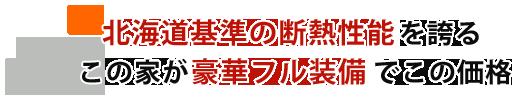 北海道基準の断熱性能のこの家が豪華フル装備でこの価格